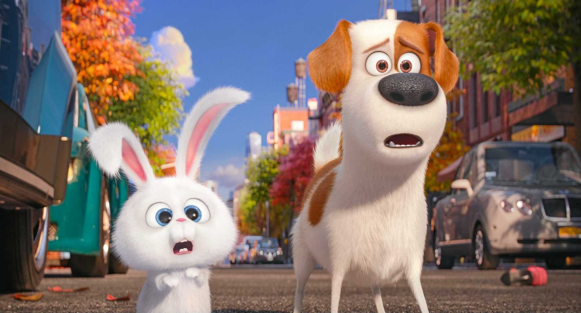 A scene from the movie The Secret Life of Pets.