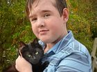 Boy returns from hospital to find beloved cats missing