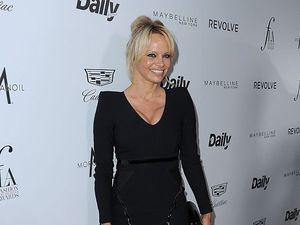 Pamela Anderson labels porn a public hazard