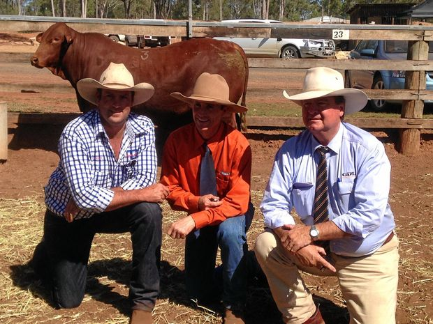 Scott Dunlop, Rick Greenup and Pete Brazier with 2014 top priced bull Greenup Justice.