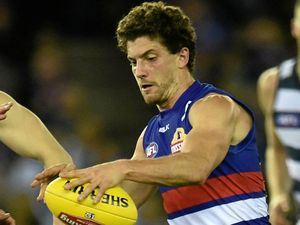 Dogs prepared to ring the changes for final