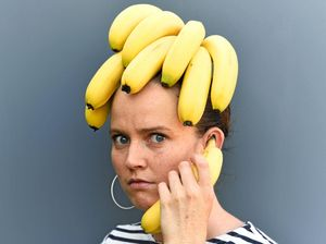 Bald-faced banana benders eye NSW businesses
