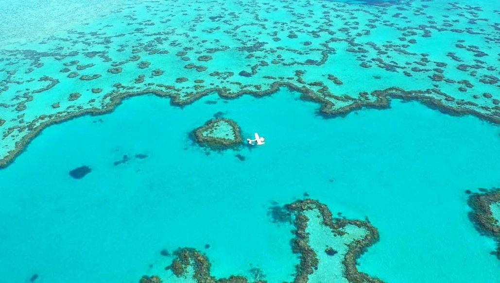 Taking a flight over Heart Reef is a popular post-wedding activity.