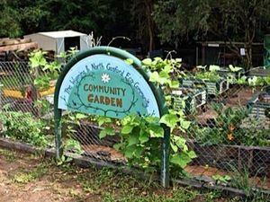 Gosford's Spring Garden Workshop - presented by Phil Pettit