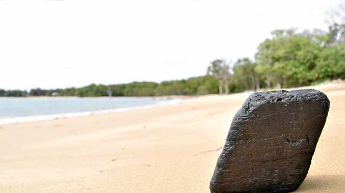 The lump of coal which washed up at Shoal Point last week.