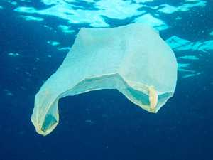 Call to ban the bag as Plastic Free July begins