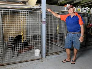Greyhound trainer has to fight for Lockyer Valley property