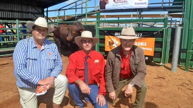 Rob Sinnamon, Max Baldwin and Malcolm Gatesby at the bull sale at the Roma saleyards on Wednesday.
