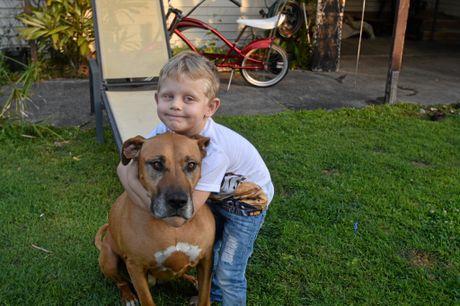 DOGGY CUDDLES: Kobie Hollands, 5 hugs his dog Sasha.