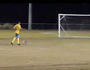 VIDEO: 'Offside' koala steals show at soccer grand final