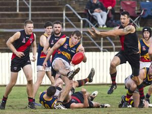 Cougars take out AFL grand final