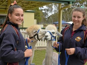 Opening up students' eyes to the agriculture industry