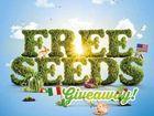 Seeds giveaway dinkus