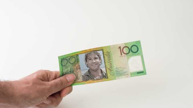 A petition has been started to get Steve Irwin's face put on Australian currency.