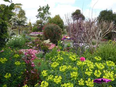 The winning Country Grand Champion garden.