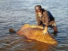 Mackay man Kenneth Leigh Saunders shows off a rare Queensland Grouper caught in the Pioneer River.