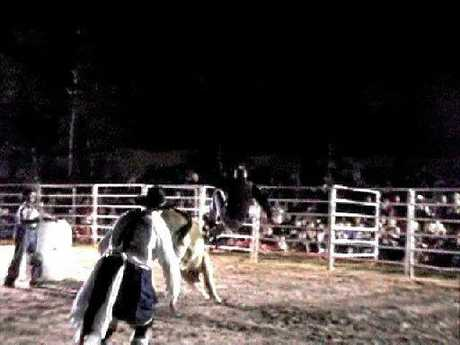 The moment Joe Natoli came off a bull at the Kenilworth Rodeo in 2005