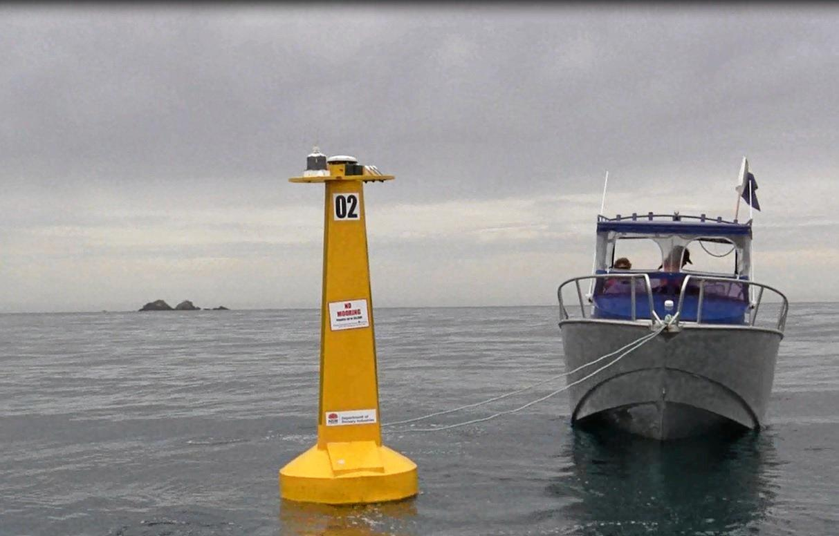 Divers installing a listening station at Clarkes Beach, Byron Bay, which will be able to monitor tagged sharks.