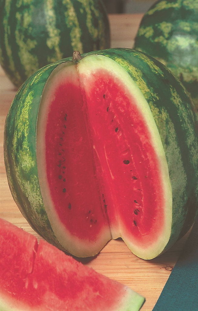 Get your Watermelon Crimson Red seeds with the paper today.
