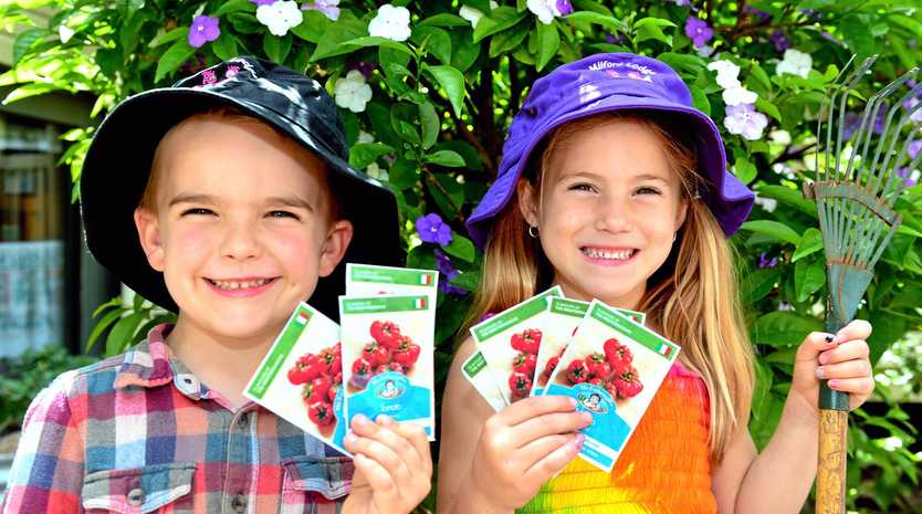 SOWING SEEDS: Aspiring gardeners Fletcher and Maggie at Buderim's Milford Lodge childcare centre with some of the Daily's free seeds.