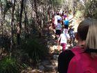 Mount Coolum is a super popular spot.