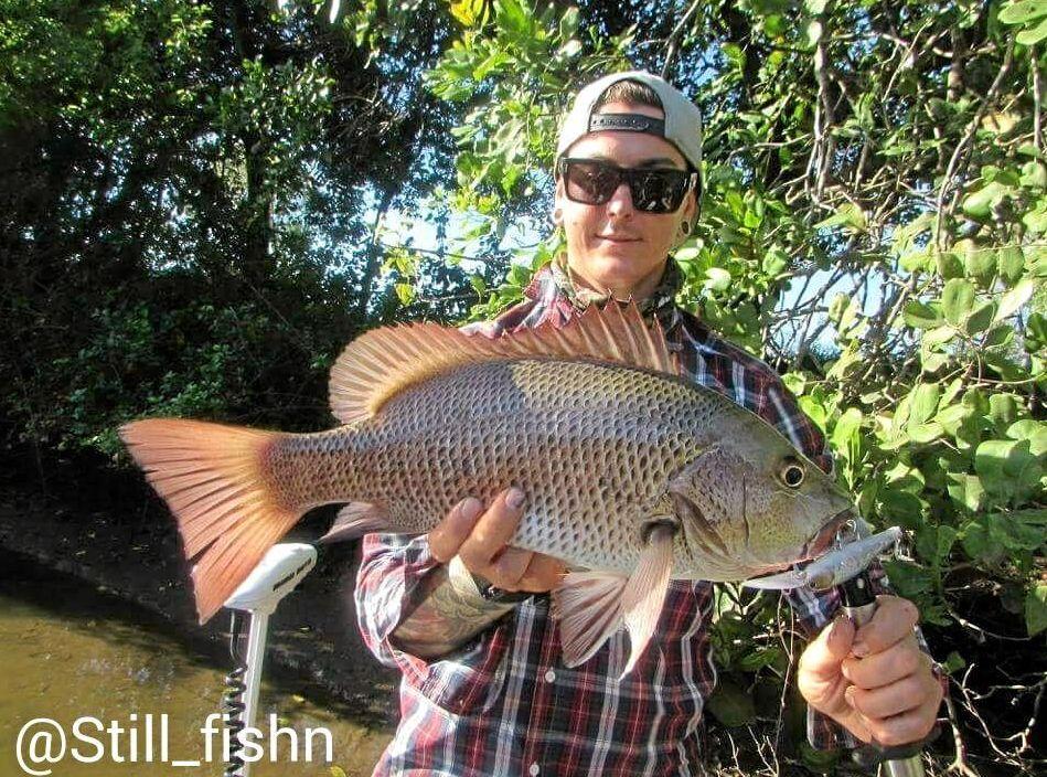 A GOOD FEED: Sam Silliars with a mangrove jack caught on a hardbody lure.