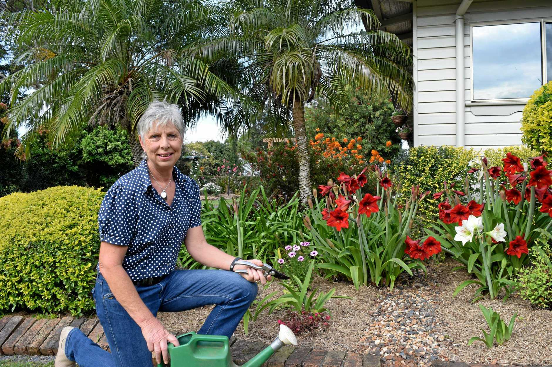 LABOUR OF LOVE: Joy Collings in her Clunes garden, which has been awarded the Champion Garden in this year's Lismore Home Garden Club spring garden competition.