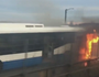 Sydney Harbour bus fire prompts resignation demand
