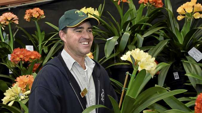 GROWTH: Gardener Andrew Kajewski shows off the Clivias on show at the TAFE Horticulture Centre.