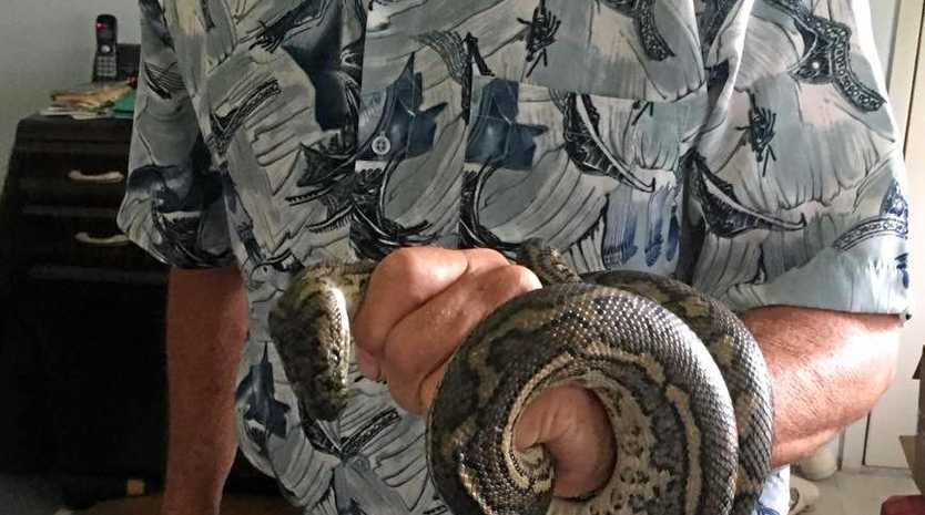 Bruce Moller with the carpet python that made itself at home on their lounge room couch.