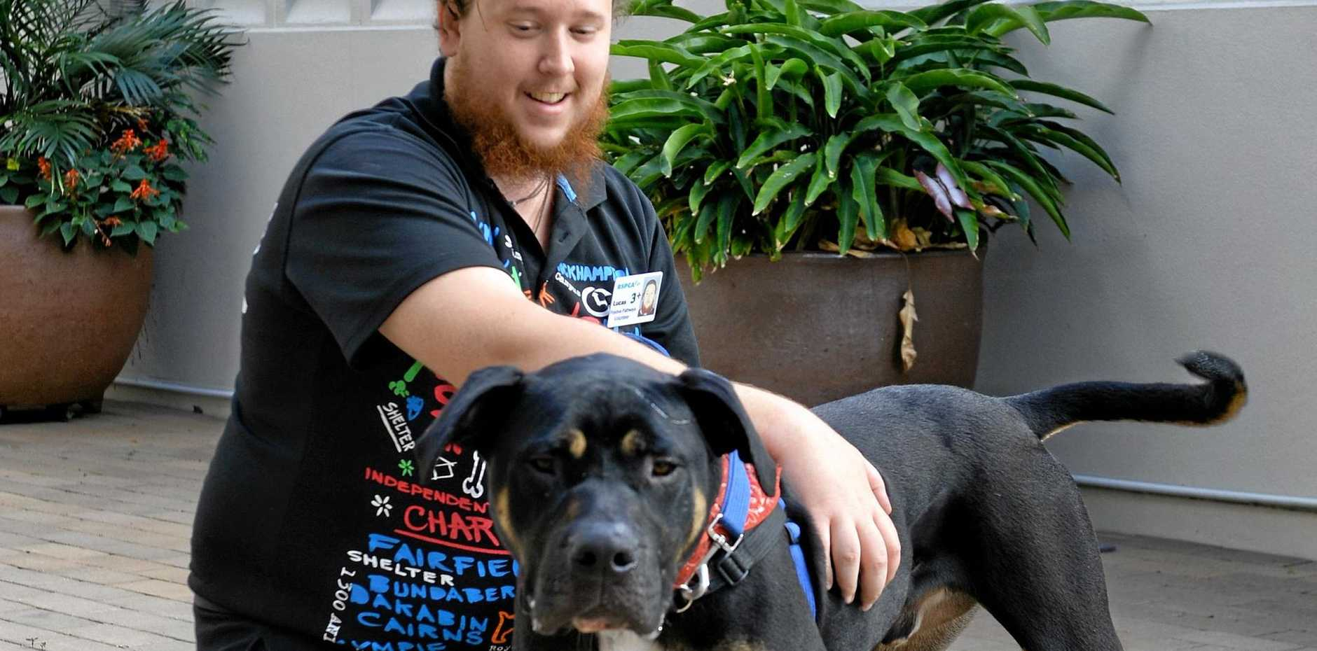 NEW SKILLS: Lucas Silvestri is taking part in the RSPCA Work for the Dole scheme with dog, Kale.