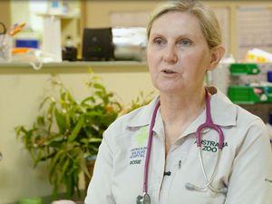Trauma Season begins at Australia Zoo Wildlife Hospital