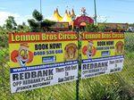 Circus operator ignores council ban