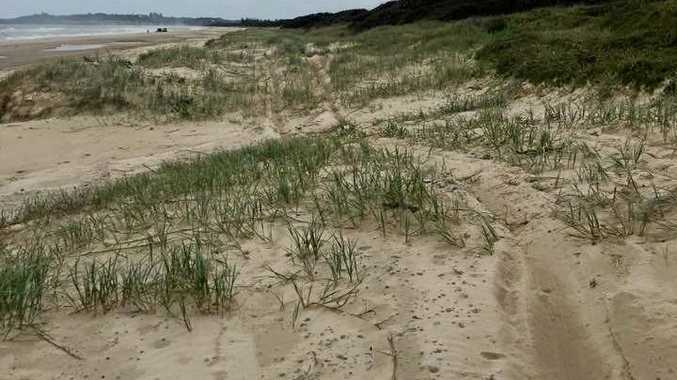 Andrew Trezise posted these photos on the Ballina Information Exchange Facebook page, warning people not to drive on the dunes of Seven Mile Beach.