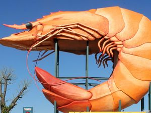 Big Prawn becomes part of classic Aussie trivia game