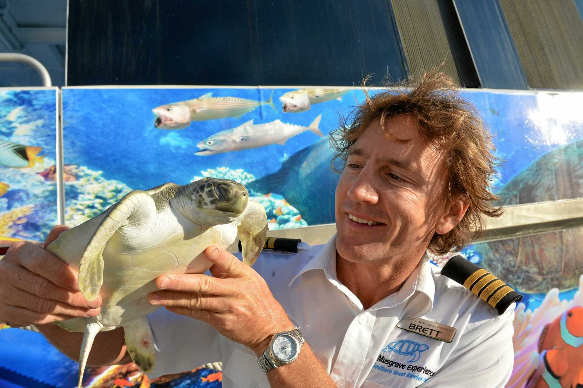 -Brett Lakey and Aaron Sprowl get ready to release a juvenile flatback that was rescued sick and injured from the waters off Sydney