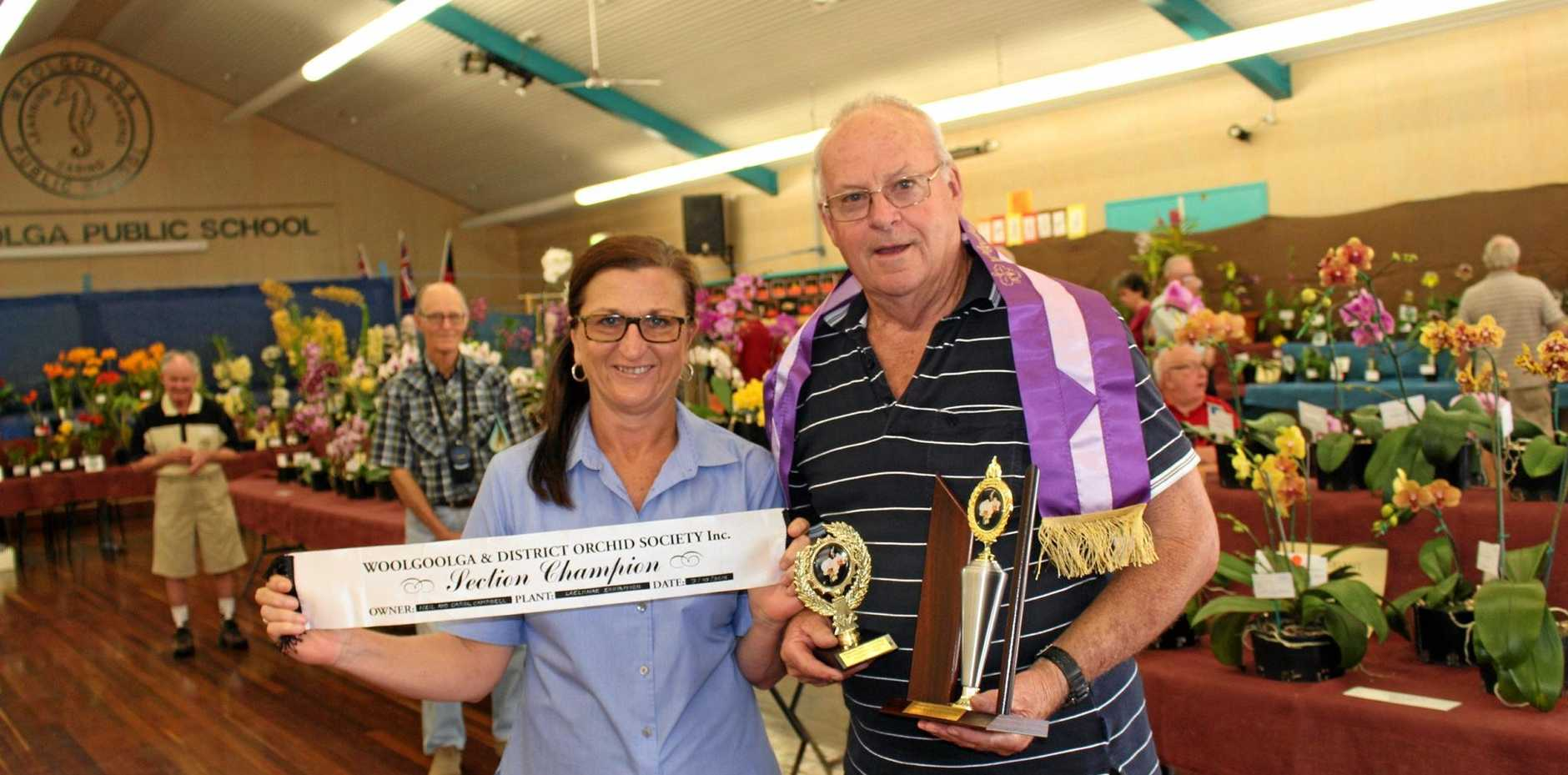 BEST IN SHOW: Last year's Grand Champion Orchid winner Neil Campbell is awarded the trophy by bcu Woolgoolga and Northside branch manager, Karen Mills.