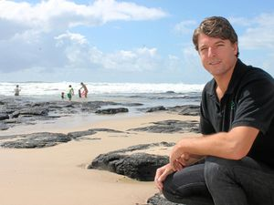 Fund Ballina's ocean pool in the shark strategy: Councillor
