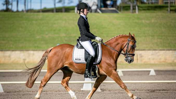 TROT: Bundaberg's Indiana Anderson competing on Mister Crescendo.