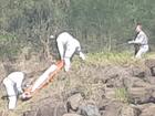 Police retrieve body at Banora Point.