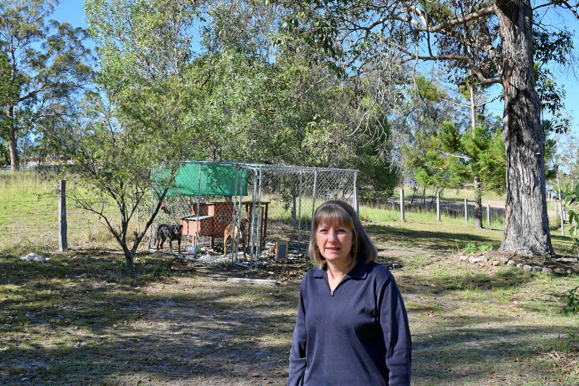 Southside resident Sharon Bothams is devastated after two dogs got into her chook pen last night and killed the family's pet chickens.