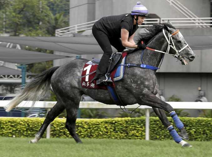 Chautauqua during trackwork in Hong Kong earlier this year.