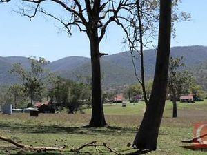 Tree clearing dispute