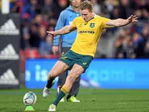 Hodge keen to sink the boot into Springboks