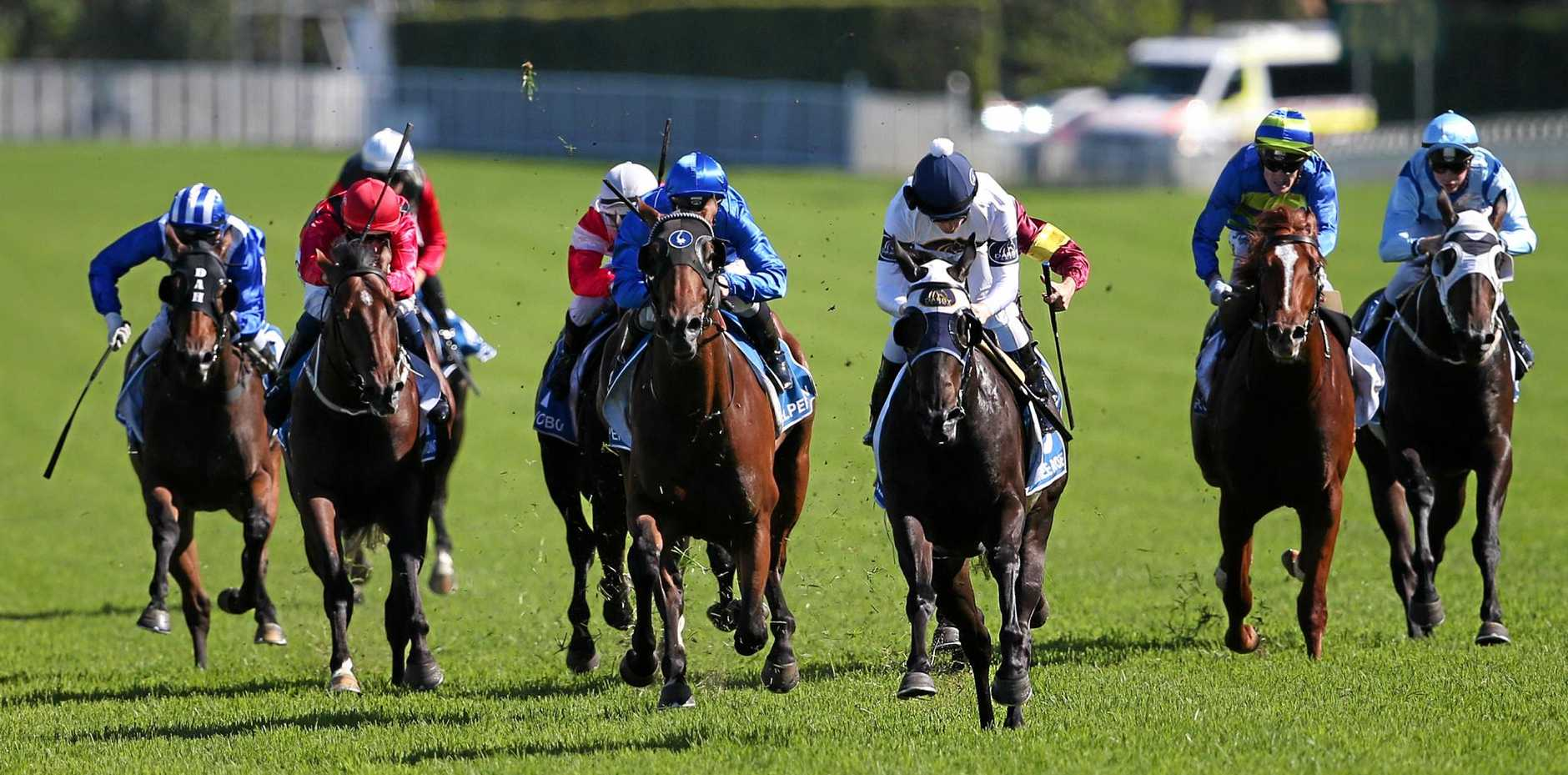 STAR PERFORMER: Yankee Rose, centre, wins the Inglis Sires at The Championships.
