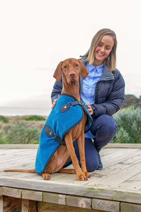 Sunshine Coast business Owen & Edwin launched one month ago and make luxury attire for large pooches.