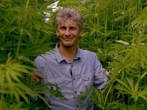 The New Zealand house that hemp built