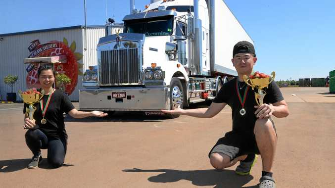 LIFTING TRUCK-LOADS: Fastest packers Chi Chen and Mao Ling filled three trucks at SSS Strawberries.