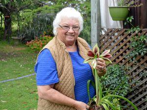 Elaine calls the Lockyer valley home