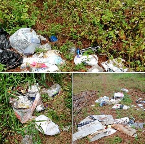 Household rubbish dumped at the forestry at Anderleigh.